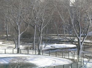 Winter View of Skyline Park